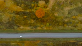 путь : View From Above. Aerial View Flying Above Fall Nature Road Running Through Countryside. Road in Autumn Scenery Aerial Shot. White Car Driving on Road Leading Through Colorful Landscape on Autumn Day Стоковые видеозаписи