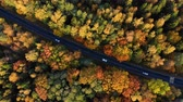 путь : Aerial View Above Road in Forest in Fall With Cars. Aerial Top View Over Straight Road With Cars in Colorful Countryside Autumn Forest. Fall Orange, Green, Yellow, Red Leaves Trees Woods.