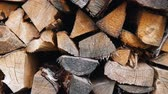 dry wall : The chopped and sawn trunks of trees is stacked in a large log woodpile in the yard. Stacked firewood prepared for the fireplace and stove, dolly shot. Stock Footage