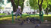 nutrir : Little cute girl feeding street pigeons with grain in the autumn park. A happy child sits on a green bench and throws seeds to the birds.