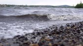 fırtınalı : Dark muddy waves with white foam on the pebble beach after the storm. Stok Video