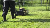 pull forward : Man mowing the grass with motor grass cutter