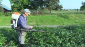 личинка : OLOMOUC, CZECH REPUBLIC, MAY 15, 2018: Chemical pesticide modern spray of potato against potato colorado bug, especially larva, the device is using man mist blower spraying