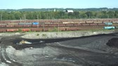 poisoned : OSTRAVA, CZECH REPUBLIC, AUGUST 28, 2018: Liquidation of remediation of landfills waste of oil and toxic substances, burnt lime is applied to the oil pollution by means of fine cutter bulldozer 4K