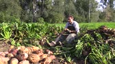 ovelha : OLOMOUC, CZECH REPUBLIC, OCTOBER 5, 2017: Organic bio farm harvested beet root Beta vulgaris var. rapacea on pile. Family people farming, high quality feed for cattle and pigs agriculture Vídeos