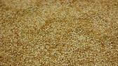 supermercado : Quinoa Chenopodium quinoa seeds superfood detail close-up bio organic, fruit plant ceased to cereal suitable for vegan nutrition, vegetarians shop store grains, Peru Bolivia cuisine, gluten-free