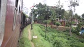 srilankan : train travels through thick green jungle at India