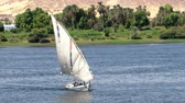 такелаж : Feluccas sailing on the Nile, Egypt