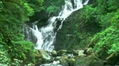 river : Waterfall in deep forest during the day filmed in High Definition Stock Footage
