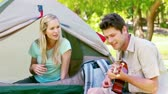 sedução : Man playing guitar to his wife in a park Stock Footage