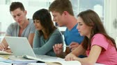 work : Serious students working together while sitting in a bright room Stock Footage