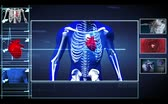 bodily : Interface showing running skeleton with pumpig heart and vein interior in blue black and red