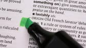 marcador : Law highlighted in green in the dictionary
