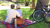 conversation : Happy couple having a picnic in the park on a sunny day