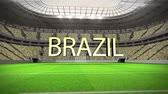 camarões : Group A world cup animation in stadium with text Vídeos