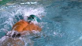 fitness : Muscular swimmer doing the front stroke in the pool in slow motion Stock Footage