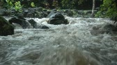 corrente : The rapids of a tropical river 4