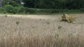 machinery : A combine Harvesting a Field