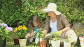 working parents : Grandmother and granddaughter gardening together in the garden