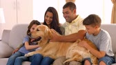 happy : Happy family smiling with their dog in ultra hd format Stock Footage