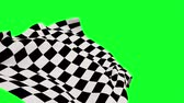 windy : Digital animation of Checkered flag against green screen
