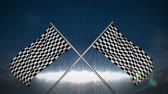 windy : Digital animation of Checkered flag in flashing arena Stock Footage