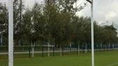 arremesso : Close up of Rugby posts on the pitch Vídeos