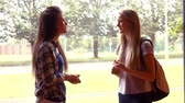 university : Two students talking to each other at college Stock Footage