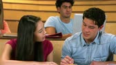 caucasian : Classmates studying in library at university Stock Footage
