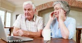 livingroom : Senior couple using laptop together at home Stock Footage