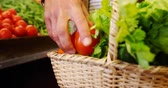 frondoso : Mid section of man putting tomatoes in basket at organic section of supermarket