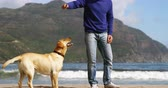 male animal : Happy mature man playing with dog on the beach during winter time