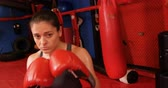 fitness : Female boxer performing a boxing stance in fitness studio