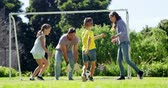 weather : Happy family playing football in park Stock Footage