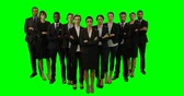 against : Portrait of business executives stand with arms crossed against green screen