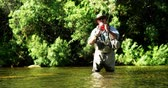 catching the wind : Man fly fishing in river on a sunny day Stock Footage