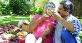 comestível : Senior couple drinking wine at the park Vídeos