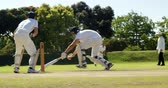 batedor : Fielder throwing ball to wicket keeper during cricket match on cricket field Stock Footage