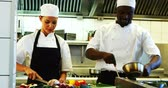 vegetable : Chefs preparing food in commercial kitchen at restaurant Stock Footage