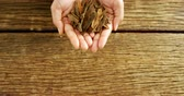 recipe : Close-up of hands of woman holding cinnamon over wooden platform 4k Stock Footage