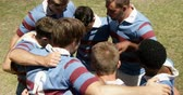 amontoado : Rugby players forming a huddle on the field on a sunny day 4K 4k Vídeos