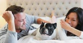 arquejo : Happy couple playing with pug dog in bedroom 4k Vídeos