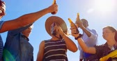 toasting : Group of friends toasting beer bottles in the beach on a sunny day 4k