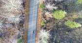 overhead shot : Aerial of person cycling on a country road through forest 4k