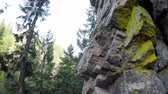 góral : Low angle view of mountaineer rock climbing on the cliff in forest 4k