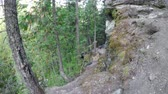 montanhismo : Courageous rock climber climbing a cliff in the forest 4k Vídeos