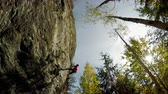 góral : Low angle view of rock climber climbing the cliff in the forest 4k