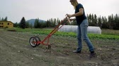 horticultura : Mature woman using agricultural equipment in the farm 4k