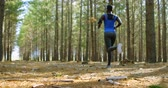 dedicação : Rear view of Woman jogging in the forest 4k