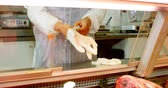 display case : Mid section of butcher wearing hand gloves in shop 4k Stock Footage